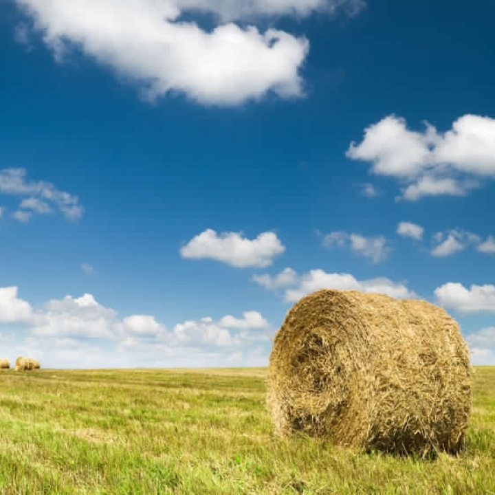 BUYING LAND FOR SALE IN SASKATCHEWAN