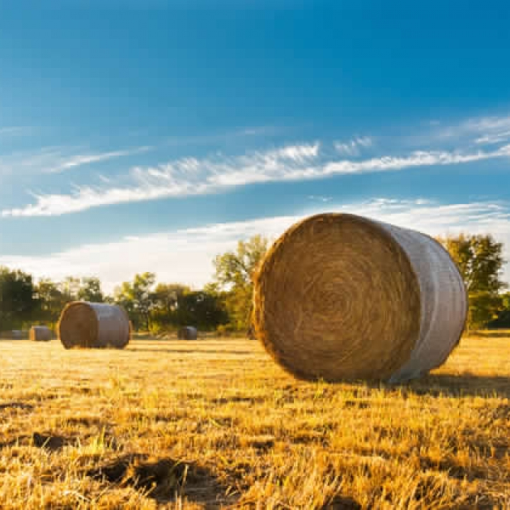 HAY LAND FOR SALE SASKATCHEWAN