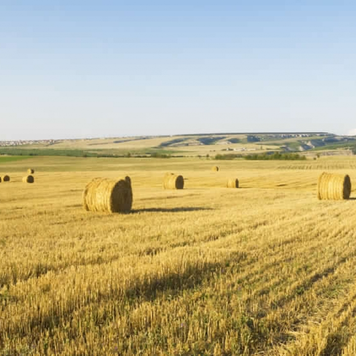GRAINLAND FOR SALE SASKATCHEWAN